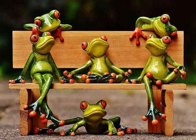 relaxing-frogs